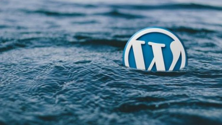 Is WordPress Premium Worth It